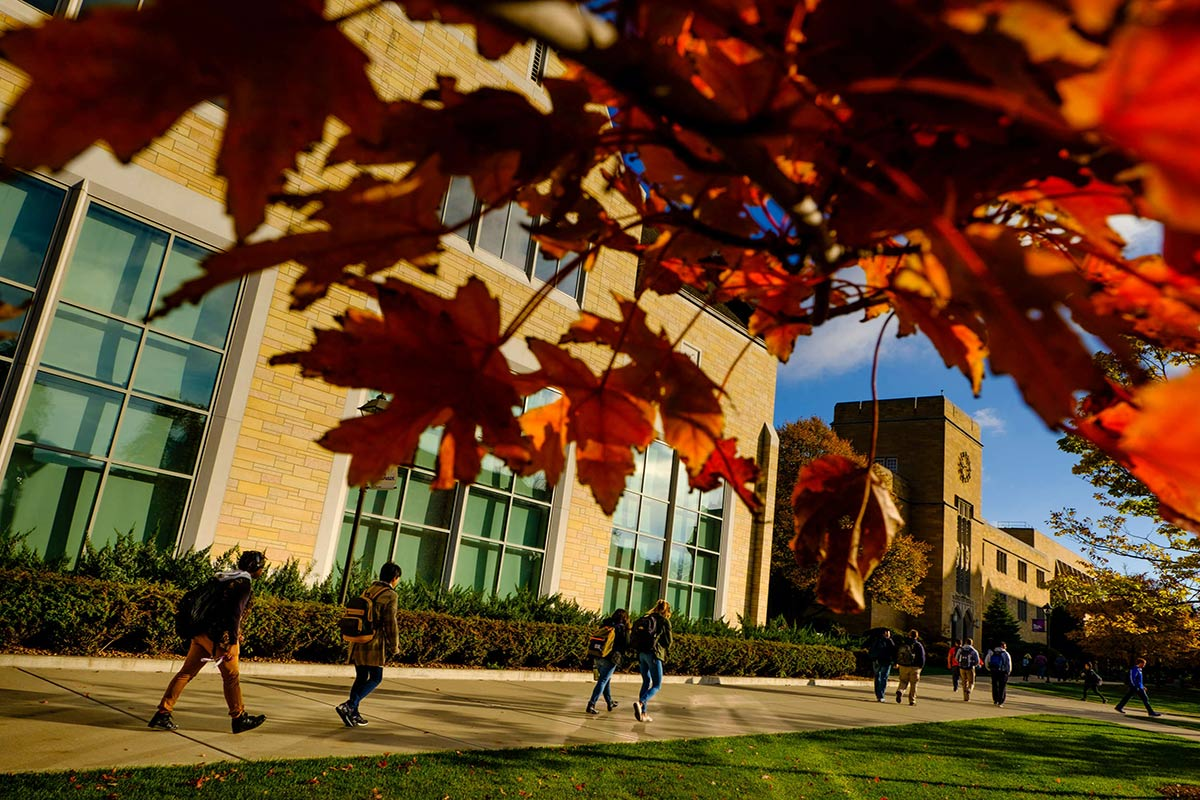 Students walk along the lower quad past
