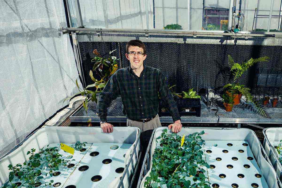 "Biology professor Gaston ""Chip"" Small poses near his aquaponics experiment in the Owens Science Hall Greenhouse."