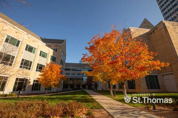 University of St. Thomas campus scene and background