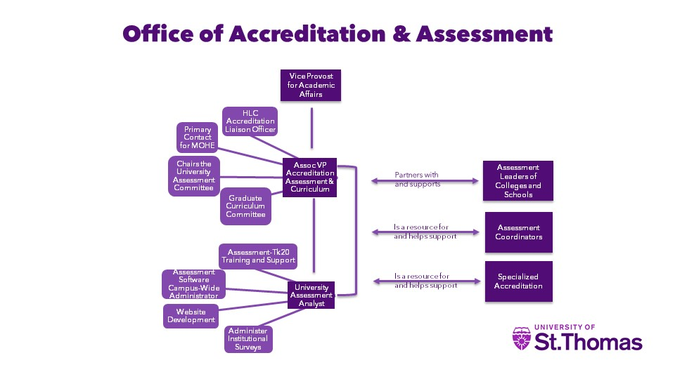 Office of Accreditation and Assessment Organizational Chart