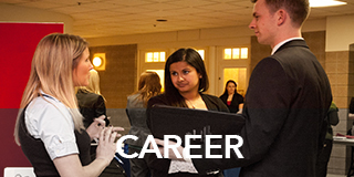 Link to Career Development  -Career