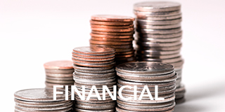 Link to Financial Resources -Financial