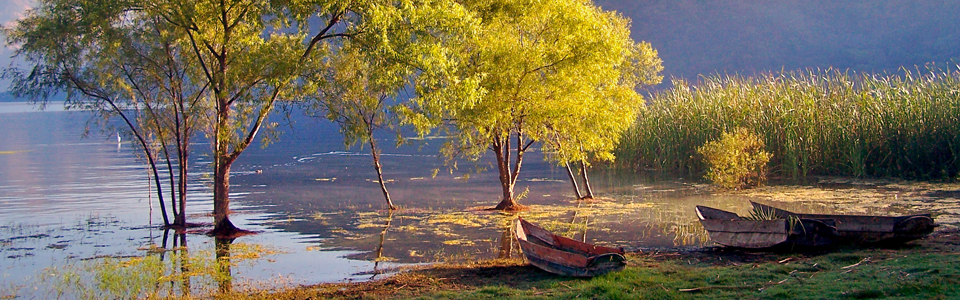 Three rowing boats sitting on the shoreline of a calm lake